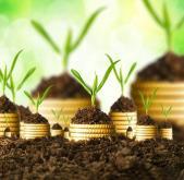 Start-ups, PME : comment industrialiser votre Système d'Information ?
