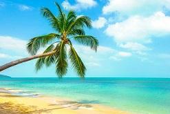Les jeudis de Sophie : 5 astuces pour préparer sereinement vos congés d'été !