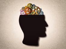Le cerveau, cet inconnu... notre meilleur allié face à la complexité !