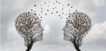 Marketing prédictif et fidélisation : l'arbre de vie pour comprendre le réachat