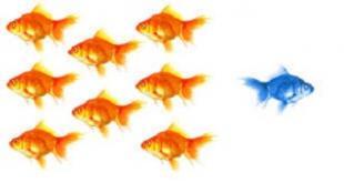 Secteur Formation : Imaginons de nouveaux business modèles...