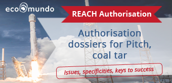 REACH Authorisation for pitch, coal tar:  issues, specificities and keys to success