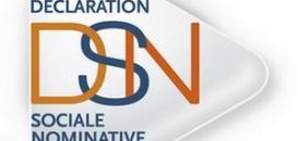 Pourquoi devez-vous systématiquement consulter votre tableau de bord DSN sur Net-Entreprises ?