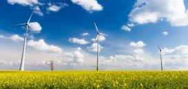 L'électricité renouvelable : comment faire pour que mon entreprise soit gagnante ?