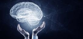 Mon cerveau et moi : 5 clés pour comprendre et gérer les comportements humains