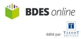 BDES et CSE : les impacts du décret du 29 décembre 2017
