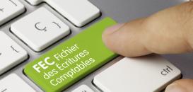 FEC  sous SAP : comment créer votre rapport de manière rapide et automatique ?