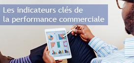 Les indicateurs clés de la performance commerciale