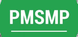 Qu'est-ce que la PMSMP ou la Période de mise en situation en milieu professionnel?