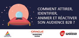 Comment attirer, identifier, animer et réactiver son audience B2B ?