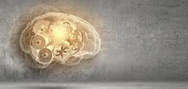 L'Intelligence Adaptative : une compétence indispensable pour pérenniser les organisations