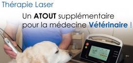 Thérapie LASER : théorie, applications et intégration dans le quotidien d'une structure vétérinaire