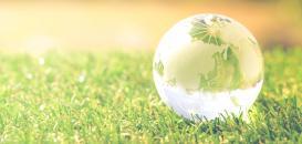 La Responsabilité Sociétale des Entreprises (RSE) : un enjeu stratégique différenciant et créateur de valeurs