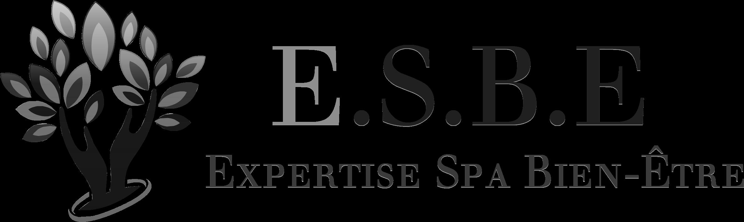 Les Ateliers d'E.S.B.E