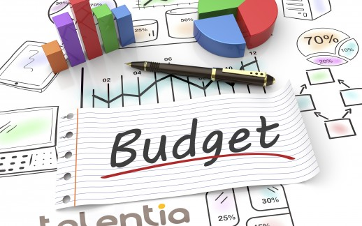 Elaboration budgétaire : abandon ou transformation des processus ?