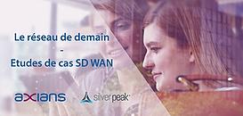 SD WAN 2.0 : Self Driving WAN, vers un réseau WAN autonome