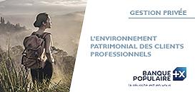 L'environnement patrimonial des clients professionnels