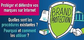 Protéger et défendre vos marques sur Internet: Quelles sont les procédures existantes? Pourquoi et comment les utiliser?