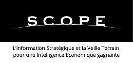 L'Information Stratégique et la Veille Terrain pour une Intelligence Economique gagnante