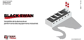 Black Swan : variabilité de la demande et performance des équipements industriels