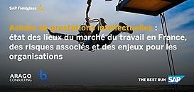 Achats de prestations intellectuelles: état des lieux du marché du travail en France, des risques associés et des enjeux