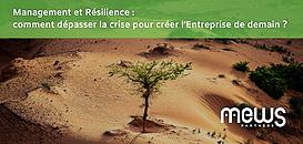 Management et Résilience : comment dépasser la crise pour créer l'Entreprise de demain ?