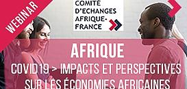 Covid19 – Quels impacts et perspectives sur les économies africaines ? Quelles répercussions sur les marchés monétaires