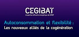 Autoconsommation et flexibilité : Les nouveaux alliés de la cogénération | Webinar Cegibat