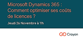 Microsoft Dynamics 365 : comment optimiser vos coûts de licences ?