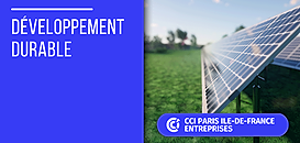 TPE/PME et rénovation énergétique : Profitez du nouveau crédit d'impôt pour agir !