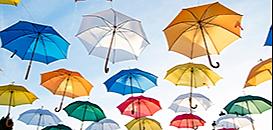 ACPR- Procédures de Contrôle & de Sanction: Préparation préalable & Stratégie de Défense pour les acteurs de l'Assurance