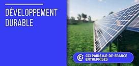 Tremplin : Le nouveau dispositif d'aide de l'ADEME pour la transition écologique des PME