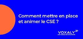 Comment mettre en place et animer le CSE ?