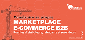 Construire sa propre Marketplace E-Commerce B2B